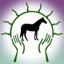 Equine Musculoskeletal Unwinding & MORE…